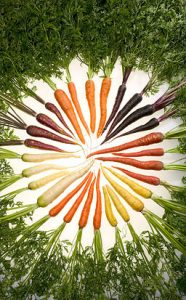 256px-Carrots_of_many_colors